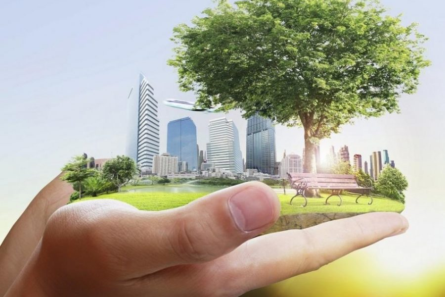 Issues, Concepts and Applications for Sustainability