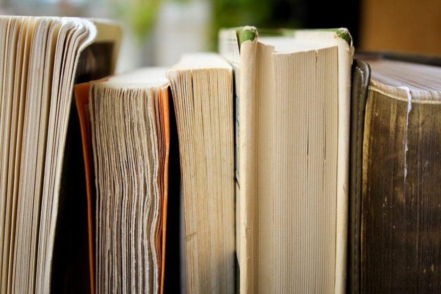 The Backlash: Are We Moving Backwards? The Latest Books on Globalization