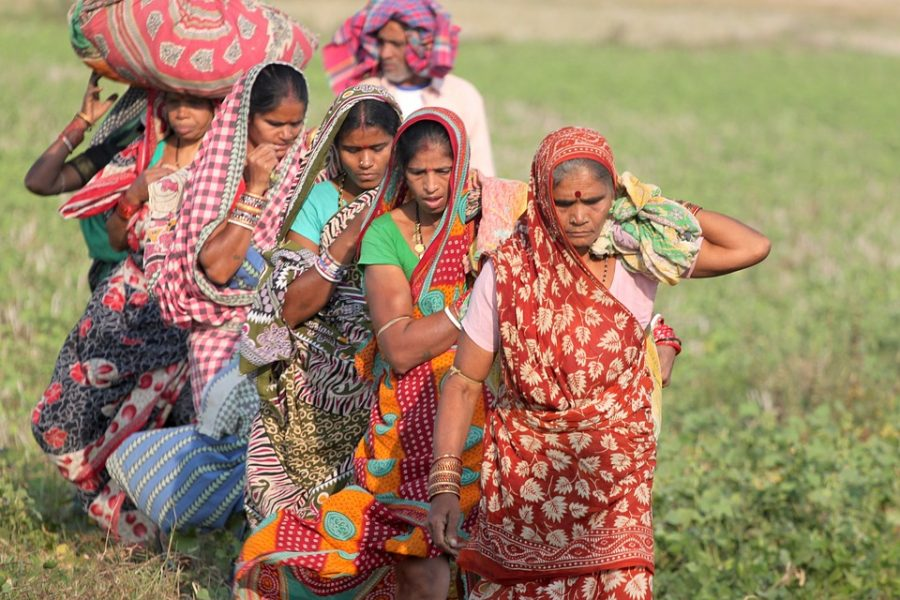Interfaces in Social Innovation: an Action Research Story on a Tribal Women's Collective